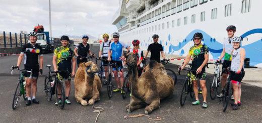 AIDA Bike Camps mit Kamelen. Foto: Prostyle