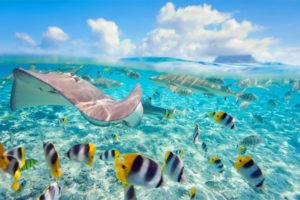 AIDA in Bora Bora. Foto: AIDA Cruises