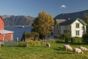Hurtigruten Kreuzfahrt in Norwegen. Foto: Hurtigruten