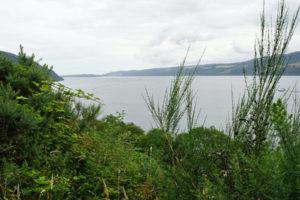Kreuzfahrt zu Loch Ness. Foto: Anna Pöhler