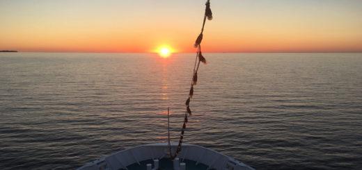Sonnenuntergang auf der MS Deutschland. Foto: Martin Schuster / Kreuzfahrtpiraten