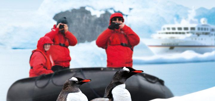 Pinguine in der Antarktis entdecken. Foto: Hapag-Lloyd Kreuzfahrten