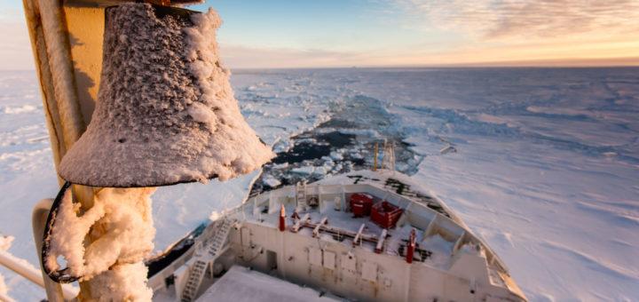 Polastern auf MOSAiC Expedition in der Arktis