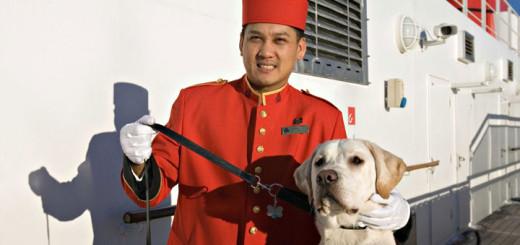 Hunde auf der Queen Mary 2. Foto: Cunard Line