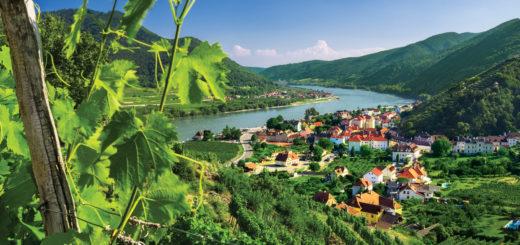 Wein-Flusskreuzfahrt mit AmaWaterways